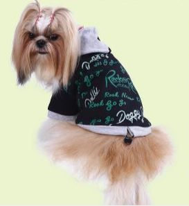 Hunde Sweater - Hundemode doggydolly auch für Mops