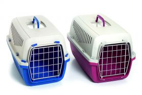 günstige Hundetransportbox blau oder bordeaux
